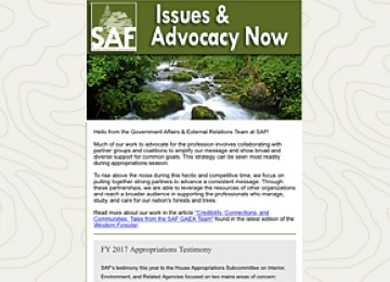 Issues & Advocacy Now